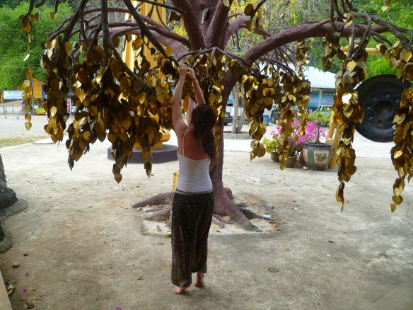 Hanging our lucky gold leaves