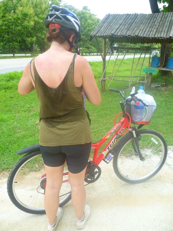 cycle chiang mai